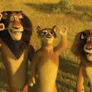 "(Left to right) Alpha lion Zuba (BERNIE MAC), his wife (SHERRI SHEPHERD) and his son, Alex (BEN STILLER) bid the no-longer-marooned tourists adieu in DreamWorks' ""Madagascar: Escape 2 Africa."" Photo credit: Madagascar: Escape 2 Africa ™"
