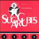 Sugarcubes Album - Stick Around For Joy