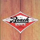 Good Vibrations - Thirty Years Of The Beach Boys