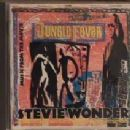 Stevie Wonder - Jungle Fever