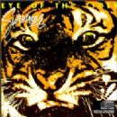 Survivor Album - Eye of The Tiger