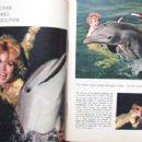 Donna Douglas - TV Guide Magazine Pictorial [United States] (28 March 1964) - 454 x 349
