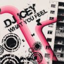 DJ Icey - What You Feel