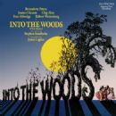 Into The Woods Original 1987 Broadway Cast Music and Lyrics By Stephen Sondheim - 454 x 454