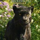 The Jungle Book - 454 x 649