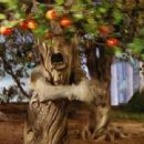 Titles: The Wizard of Oz People: Candy Candido Character: Angry Apple Tree - 454 x 340