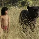 The Jungle Book (2016) - 454 x 245
