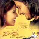 Zindagi Tere Naam 2012 movie posters - 454 x 554