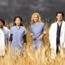Grey's Anatomy Season photos - 454 x 130