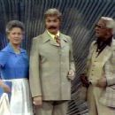 Ann B. Davis, Rip Taylor & Redd Foxx On The  Brady Bunch Hour - 454 x 351