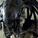 The PredAlien in Aliens vs Predator- Requiem. Photo credit: James Dittiger.