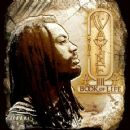 I Wayne Album - Book of Life