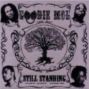 Goodie Mob Album - Still Standing