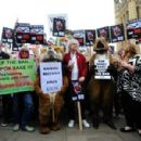 Brian May leads an anti-fox hunting rally for PETA on July 14, 2015 in London, England. - 454 x 299