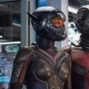 Evangeline Lilly as the Wasp in Ant-Man and the Wasp - 454 x 864