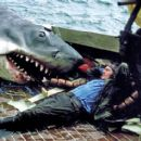 Jaws 1975 Motion Picture Thriller Starring Robert Shaw - 454 x 413