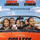 2008 films