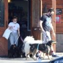 Ariel Winter – Picking up her dogs up from the veterinarian and shopping in LA