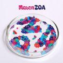 Mason Album - ZOA
