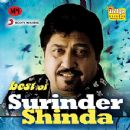 Surinder Shinda - Best of Surinder Shinda
