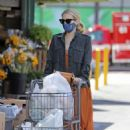 Emma Roberts goes grocery shopping in LA