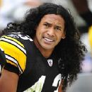 Troy Polamalu - 250 x 230