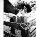 Leslie Bianchini - 335 x 352