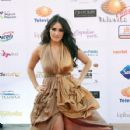 Dulce Maria: TV y novelas Awards 2012