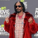 Rapper Snoop Dogg arrives at the 2013 MTV Movie Awards at Sony Pictures Studios on Ap