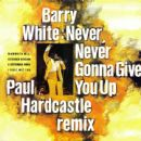 Never, Never Gonna Give You Up (Paul Hardcastle Remix)