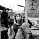 Sophia Loren - 404 x 555