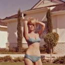 Inger Stevens - 454 x 580