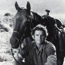 Dack Rambo - 324 x 373