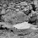 Les loups dans la bergerie - 454 x 309