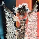 Claudia Schiess- Miss Universe 2011- Preliminary Competition- National Costume - 399 x 600
