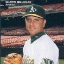 Shawn Hillegas - 253 x 350