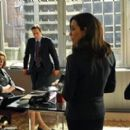 The Good Wife (2009) - 454 x 267