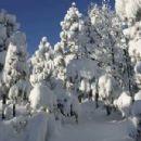Snow - 454 x 301