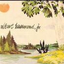 albert hammond jr