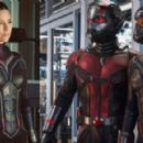 Evangeline Lilly as the Wasp in Ant-Man and the Wasp - 454 x 291