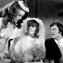 Wedding Night (1969) - 454 x 353