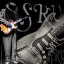 Stevie Vaughan - 360 x 360