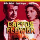 Cactus Flower - 300 x 421