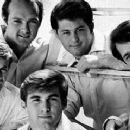 The Beach Boys - 385 x 240