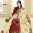 Zarine Khan Exclusive Roopam Saree Collection Pictures