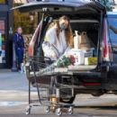 April Love – Grocery shopping in Malibu - 454 x 303