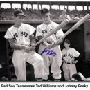 Johnny Pesky