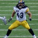 Troy Polamalu - 454 x 492