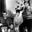 The Andy Griffith Show - 379 x 500