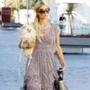 Paris Hilton Out With Her Dog - February 12, 2011